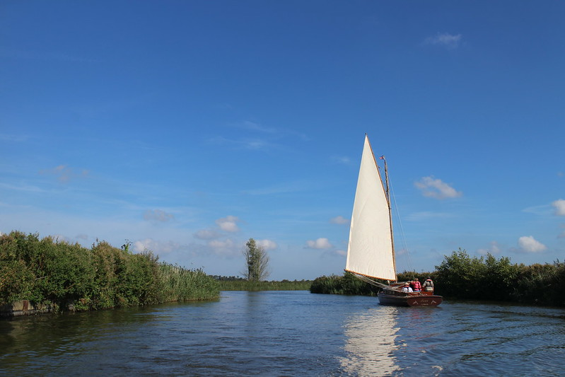 Day on the Broads with the house