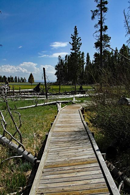 Pelican Creek Boardwalk