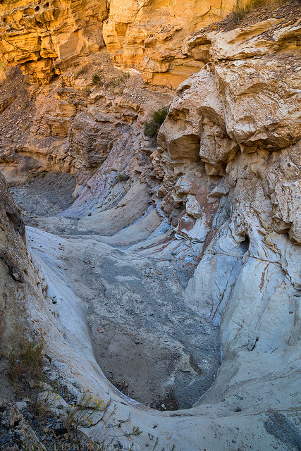 Tellerico Dryfall