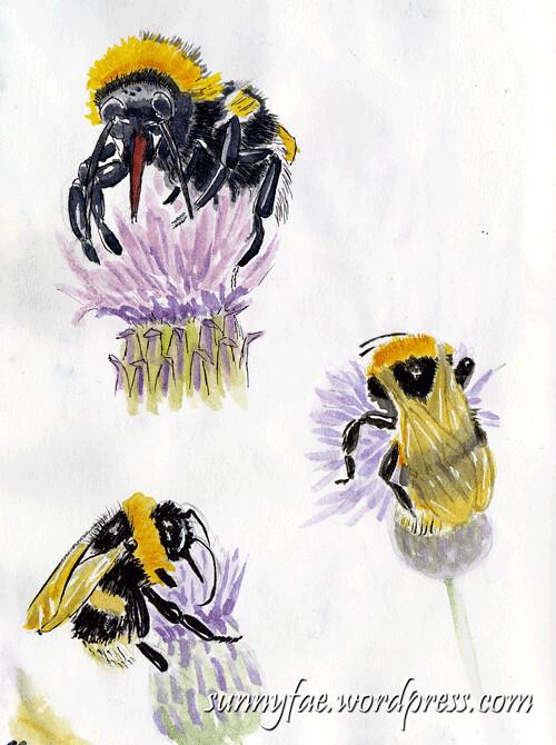 bees2-sketch