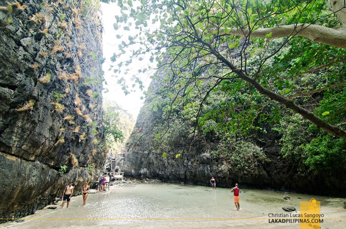 Koh Phi Phi Boat Tour Maya Bay Back Lagoon