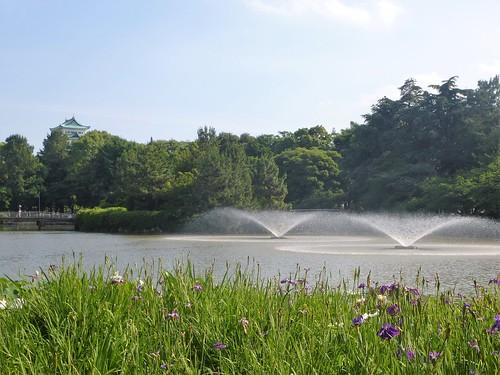 jp16-Nagoya-Château-Parc Meijon (6)