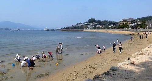 jp16-Myajima-Torii-marée basse (1)