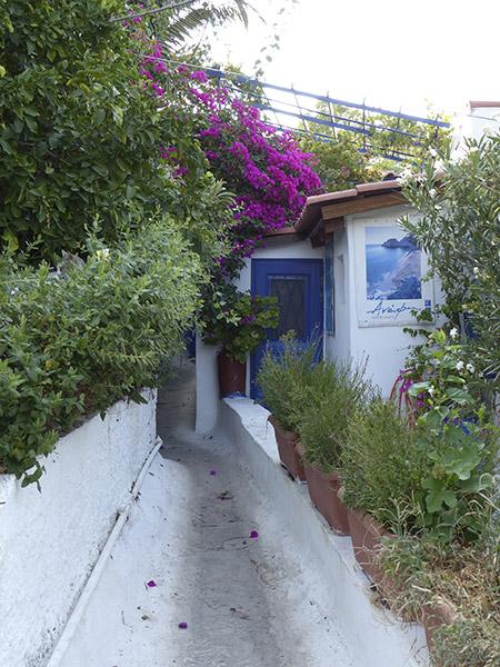 ruelle et maison bleue