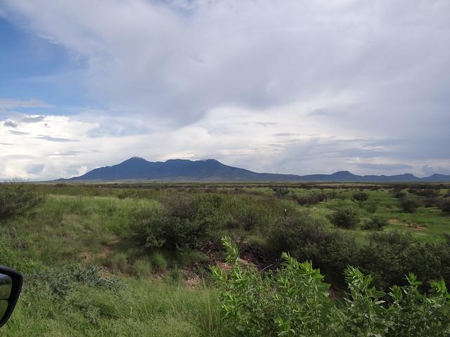 desert in Monsoon