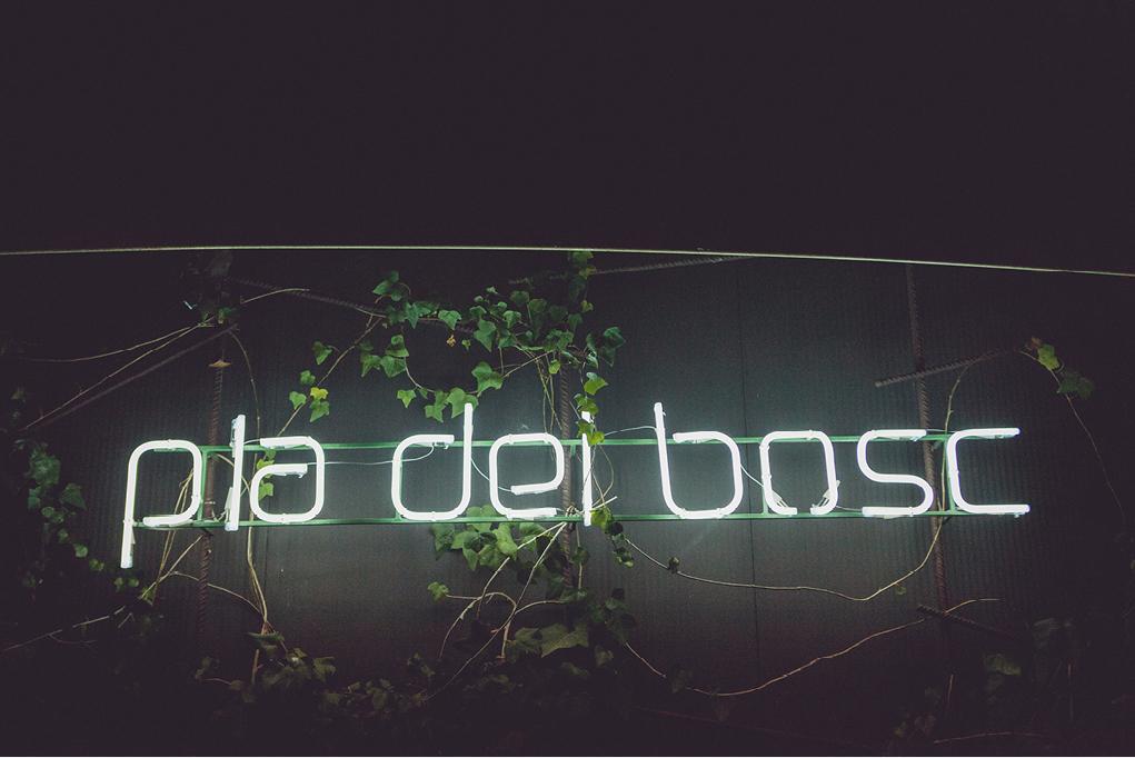 a_j_boda_seu_vella_lleida_pla_del_bosc_rosa_clara71