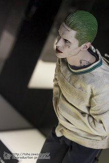 BATMAN100_HotToys_2-262