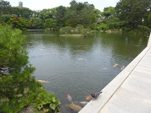 jp16-hiroshima-shukkei-en (3)