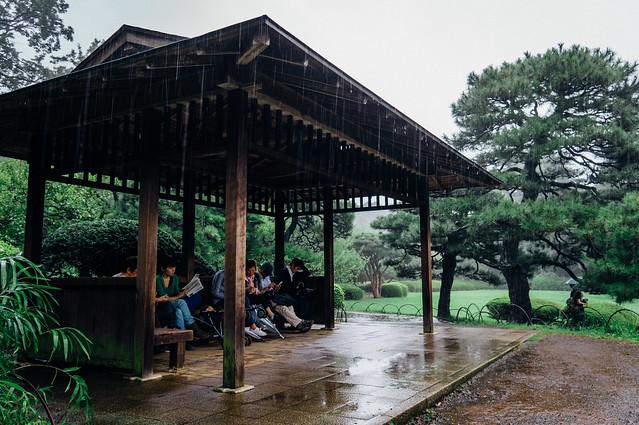 Shinjyukugyoen_08