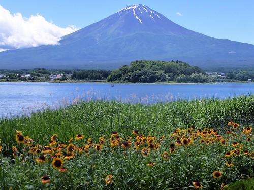 jp16-Fuji-Kawaguchiko-Nord-Shizen Seikatsu-kan (5)