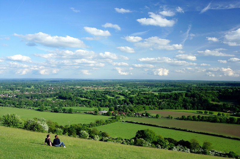 Box Hill Surrey