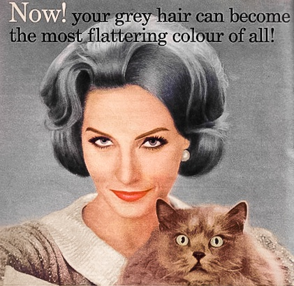 gray haired cat lady