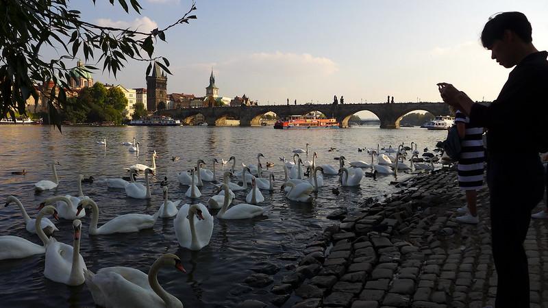 Prague 29983504201_96d8e9beee_c