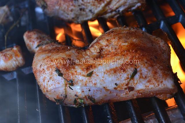 Cuisses de Poulet au Barbecue Parfumées au Tandoori  © Ana Luthi Tous droits réservés 005