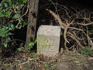20160827_3 Wiggle boundary stone