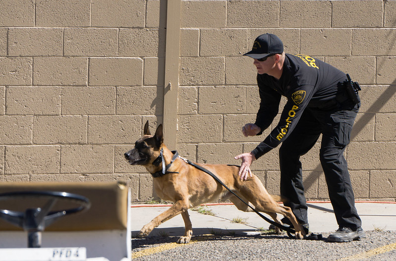 Police K-9 Being Released