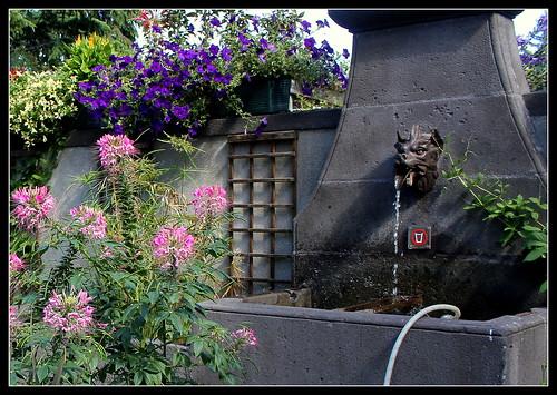 Fontaine à la Tête de loup