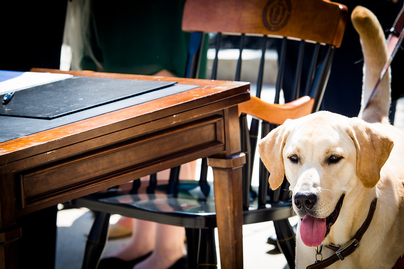 Animal Safety Bill Signing 08.24.2016