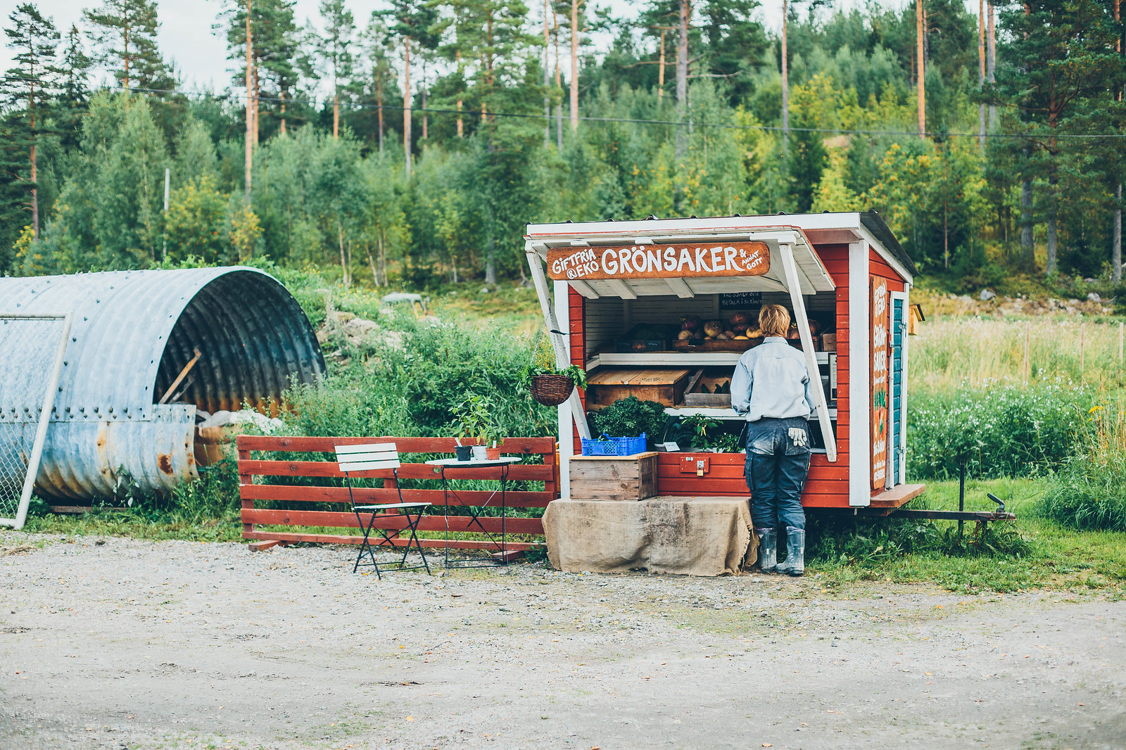 Tjärnviks gård Hälsingland - Evelinas Ekologiska