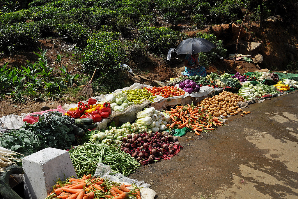 Nuwara Eliya - Fresh Vegetables at the Side of the Road
