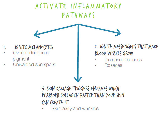 Cetaphil Skin Inflammatory Pathways