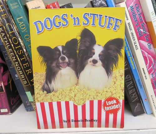 dogs n stuff