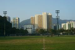 Yashinon-DS 50mm f1.9 @ f8