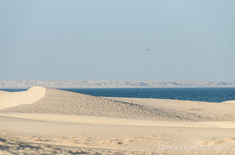 desiertos de Omán
