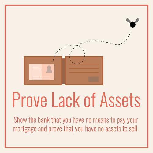 Prove lack of Assets