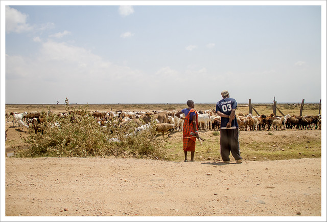 MasaiMara-21