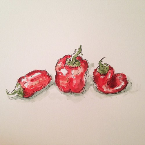 Sketching miniature bell peppers from Mockingbird Gardens at the farmers market.