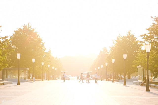 初夏,東京遊拍 | 05