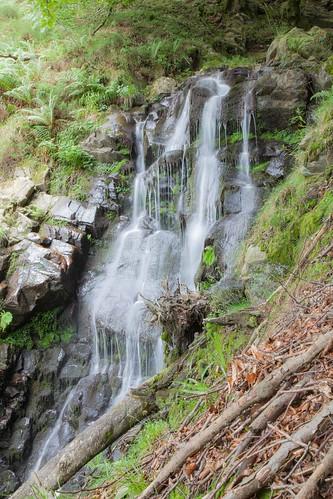 Parque Natural de #Gorbeia #DePaseoConLarri #Flickr - -7967