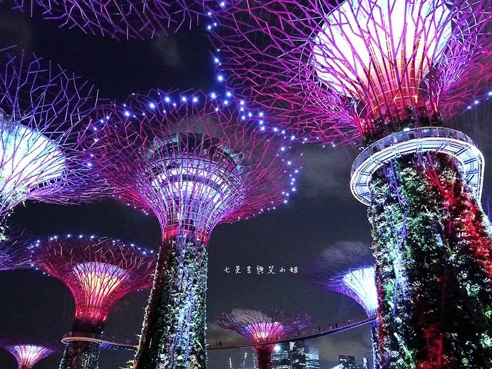 29 新加坡四天三夜自由行 美食美景購物