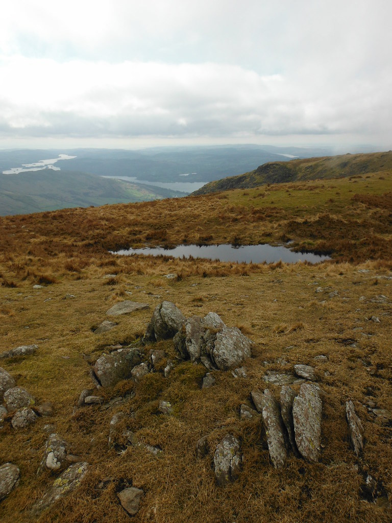 On Redscrees 4