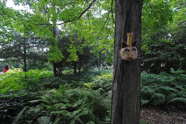 royal cat in the woods at Kelley-Kelley nursery