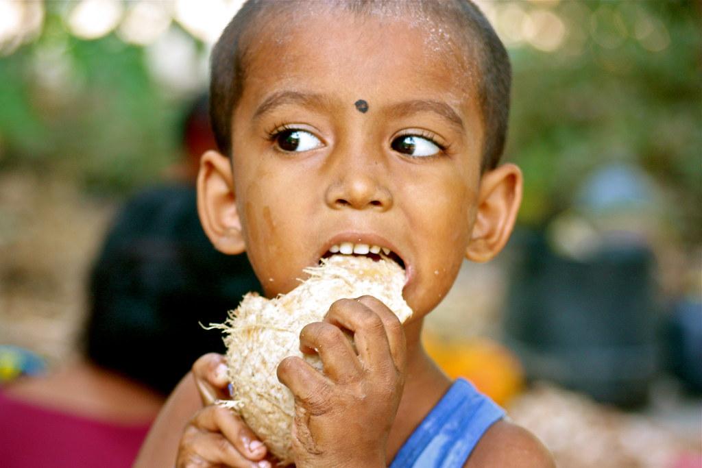 Intia 2010 602