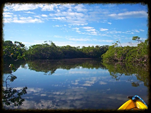 everglades kayaking 1
