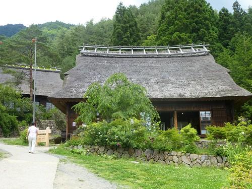 jp16-Fuji-Saiko-Village (6)