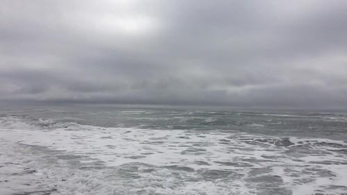 nxnw_prairiecreek_beach_seal