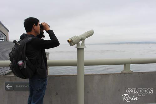 160703f Monterey Bay Aquarium _047