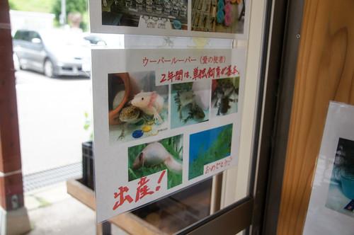 飯山旅行2016