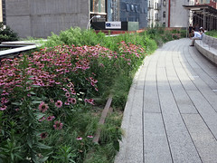 nyc134highline