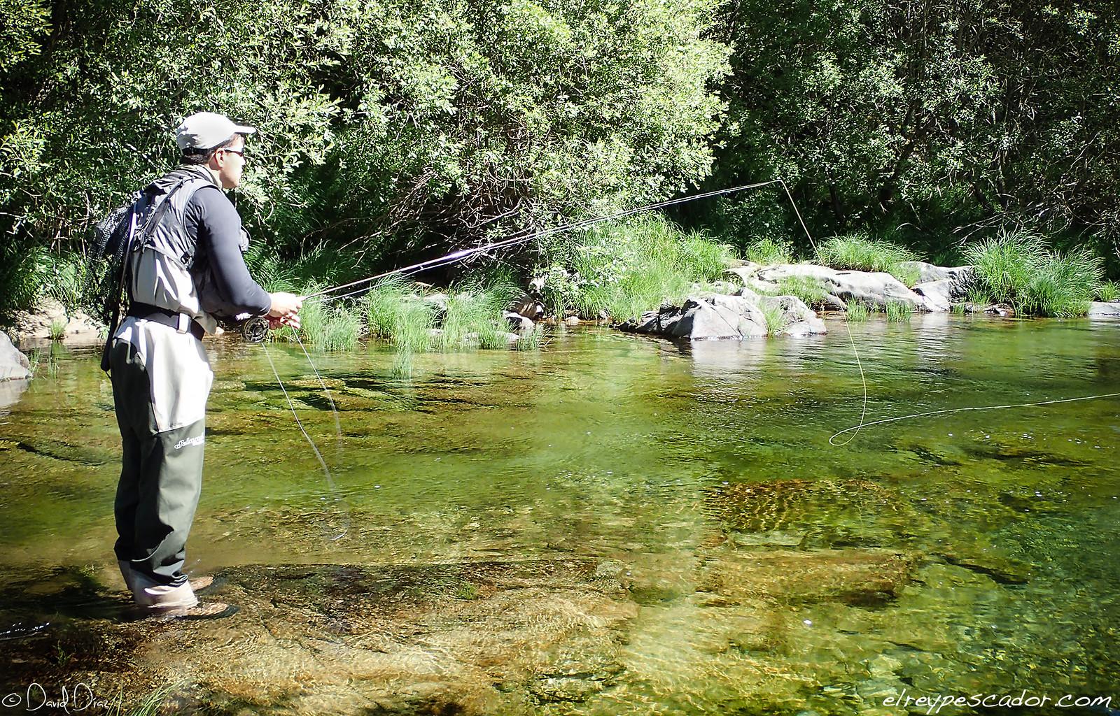 Pescando en el río - Coto de Barbellido (Avila) - Flyfishing