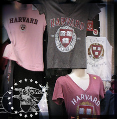 harvardSQ [mauvelous]