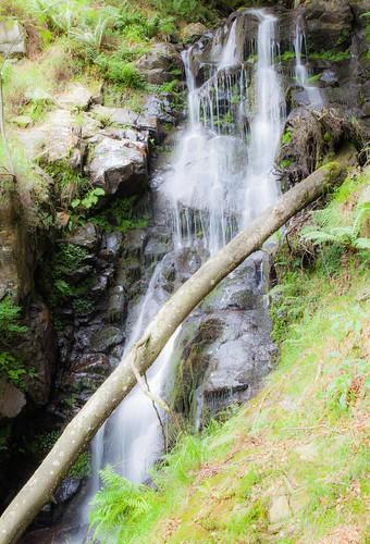 Parque Natural de #Gorbeia #DePaseoConLarri #Flickr - -7965