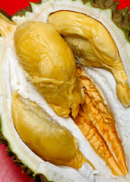 Trakka Durian