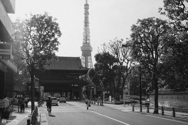 初夏,東京遊拍 | 04