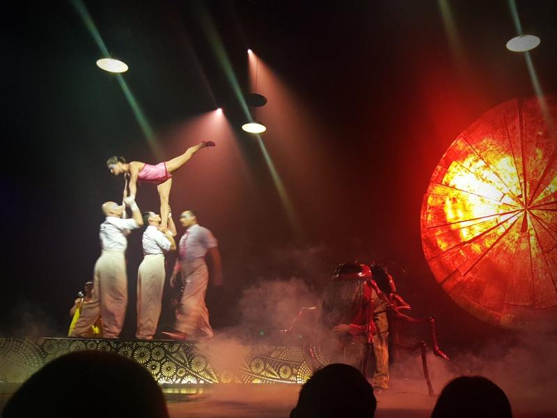 Cirque du Soleil Luzia Adagio