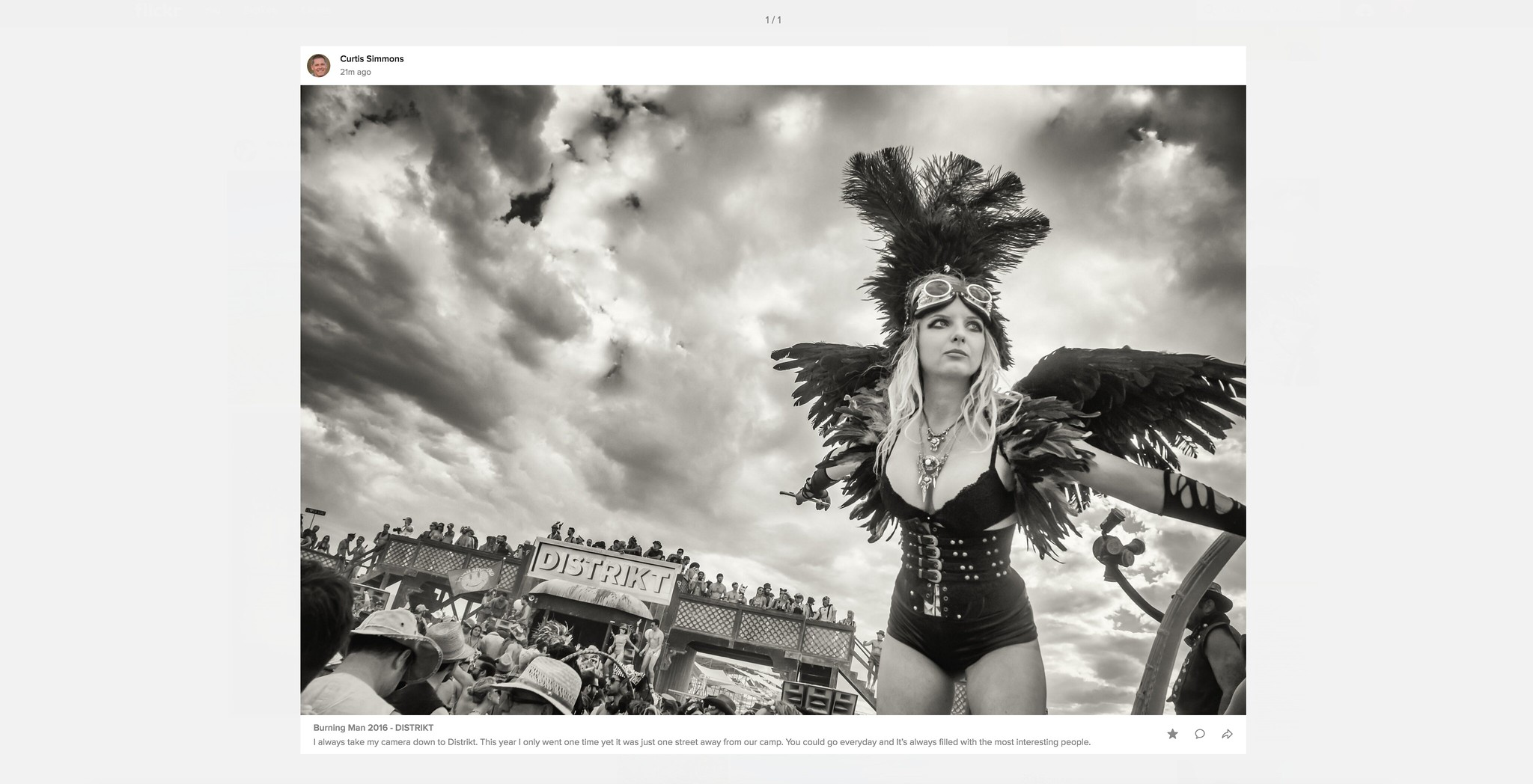 Previews in the New Flickr Feed Look Awesome!